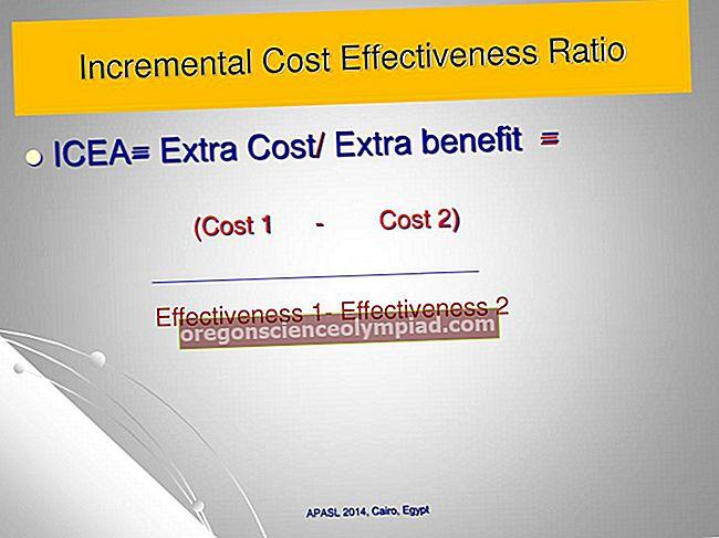 Přírůstkové náklady