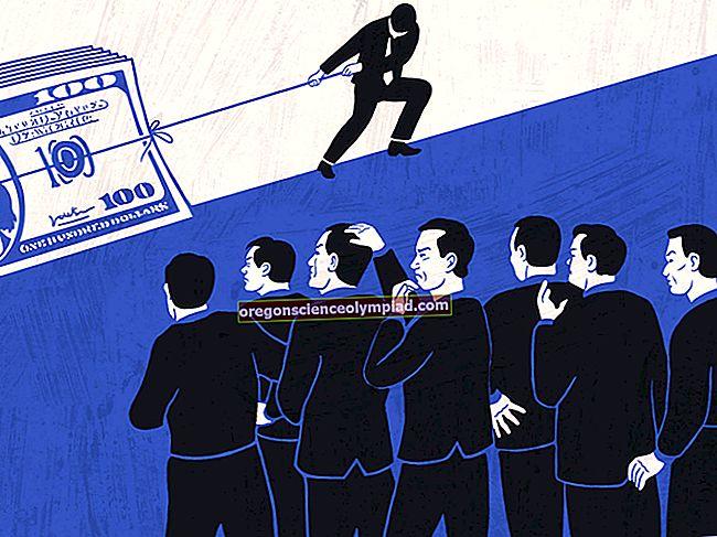 Vyhlazení příjmů