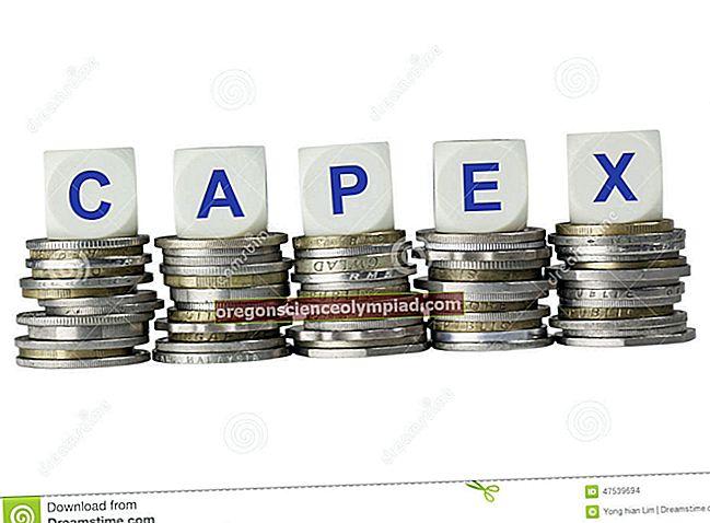 Capexi määratlus