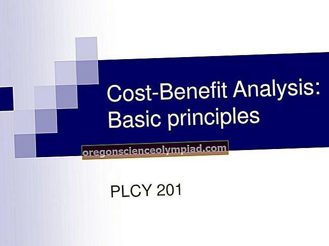 Princip nákladové výhody