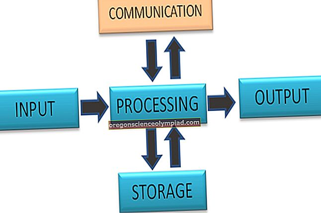 Cyklus zpracování dat