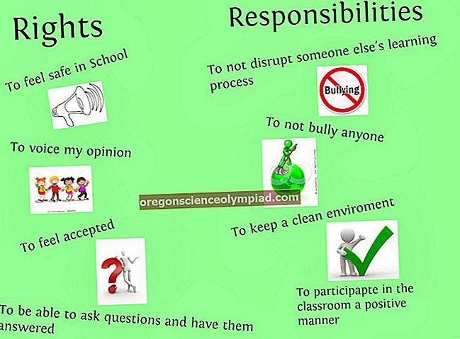 حقوق و واجبات