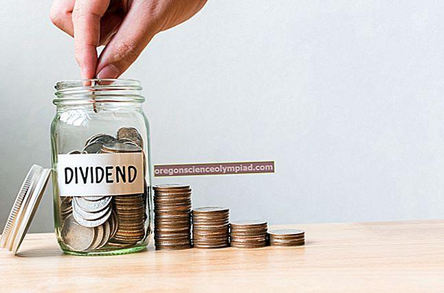 Kdy jsou vypláceny dividendy?
