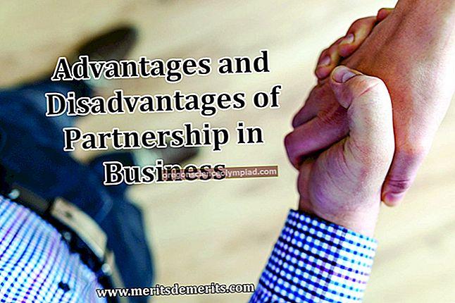 Výhody a nevýhody partnerství