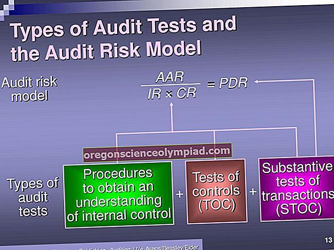 Druhy auditů