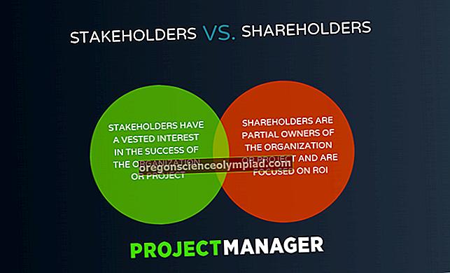 Rozdíl mezi akcionářem a akcionářem