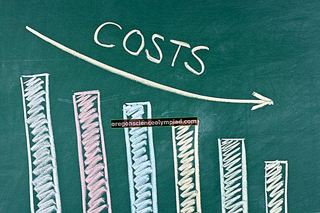 Dopad výdajů na rozvahu
