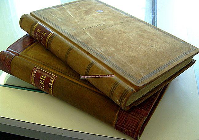 Účet hlavní knihy