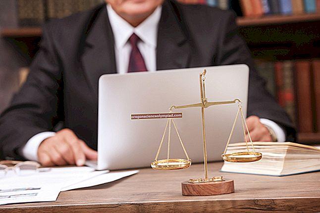 Právní páka