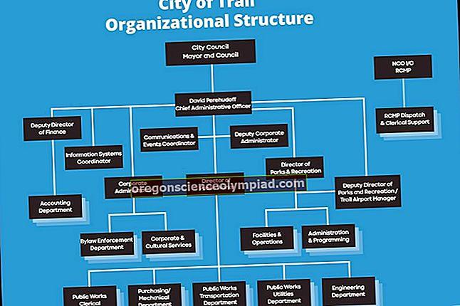 الهيكل التنظيمي الأقسامى