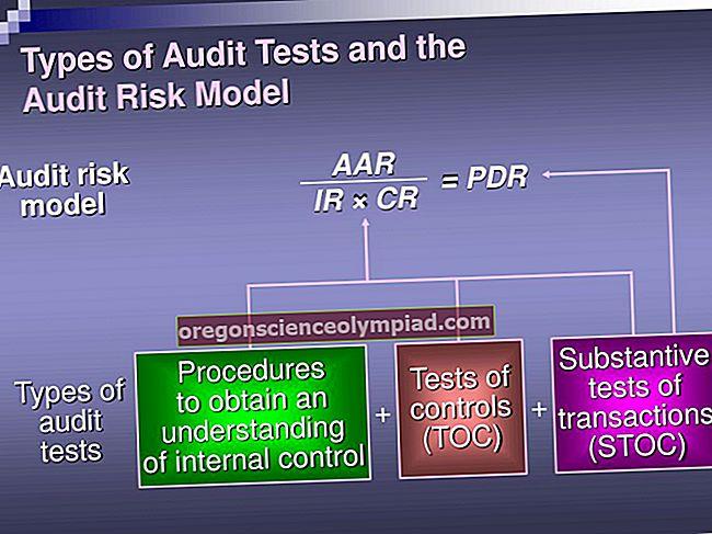 Auditi riskimudel